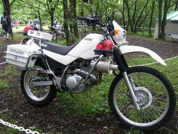 Rimg20646