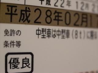 Rimg23915