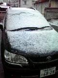 まだまだ積雪