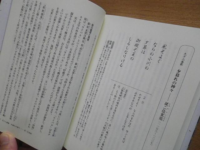 Imgp2291